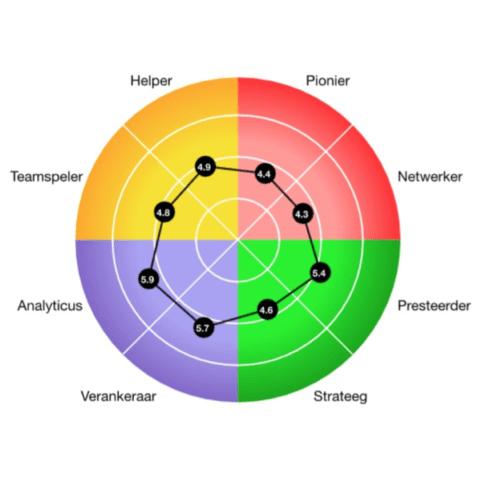 voorbeeld van de resultaten in een Octogram - CT2.nl