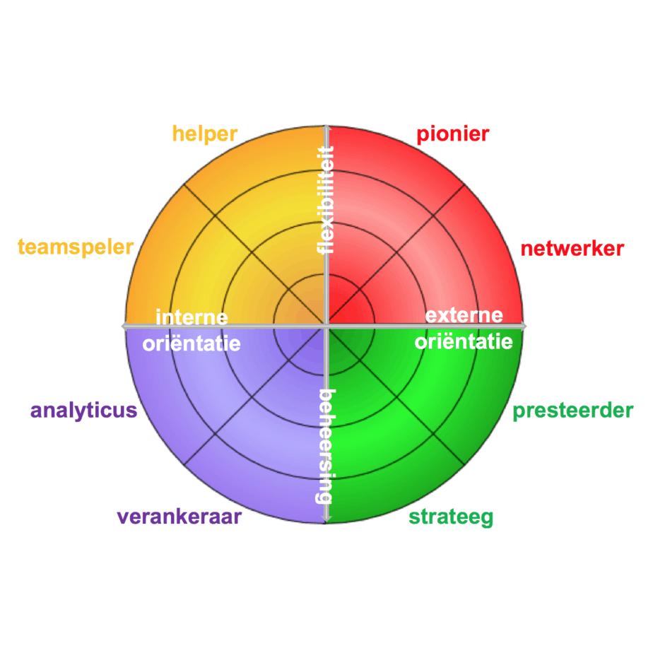 figuur 2 Octogram van Quinn - CT2.nl