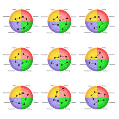 voorbeeld van de resultaten van 9 groepsleden - CT2.nl