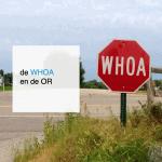 de WHOA en de ondernemingsraad - CT2.nl